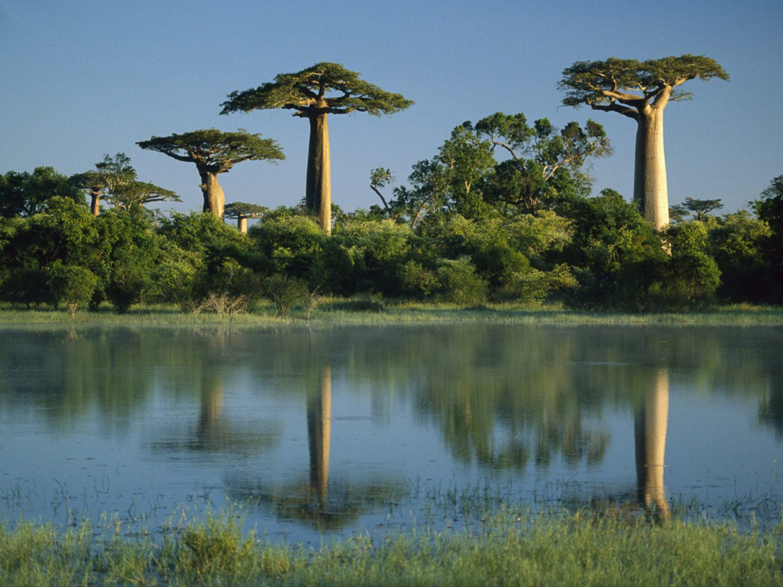 Madagascar, tra lemuri e mare…
