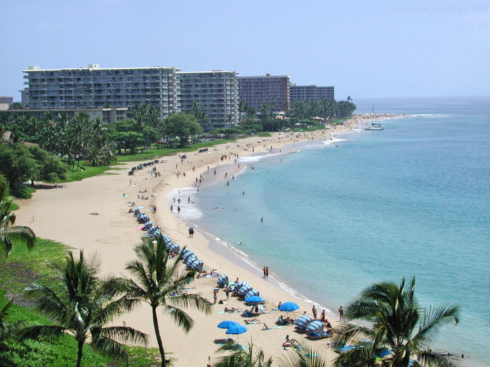 hawaii07-1614357419.jpg