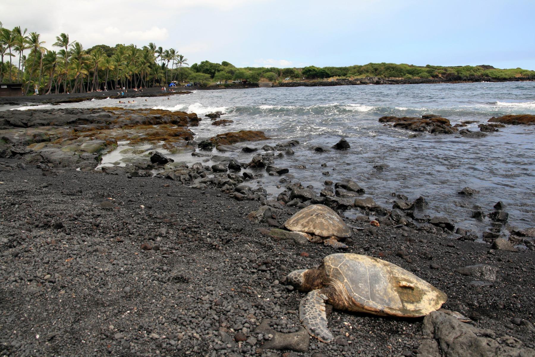 hawaii13-1614357661.jpg
