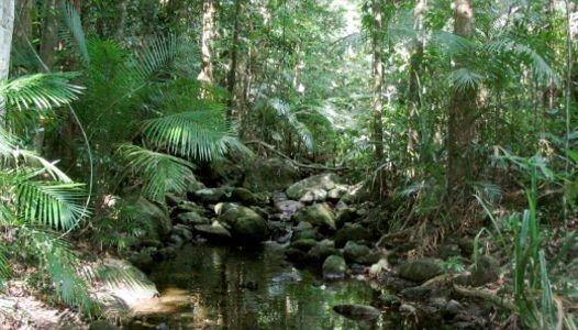 australia20-1600095539.jpg