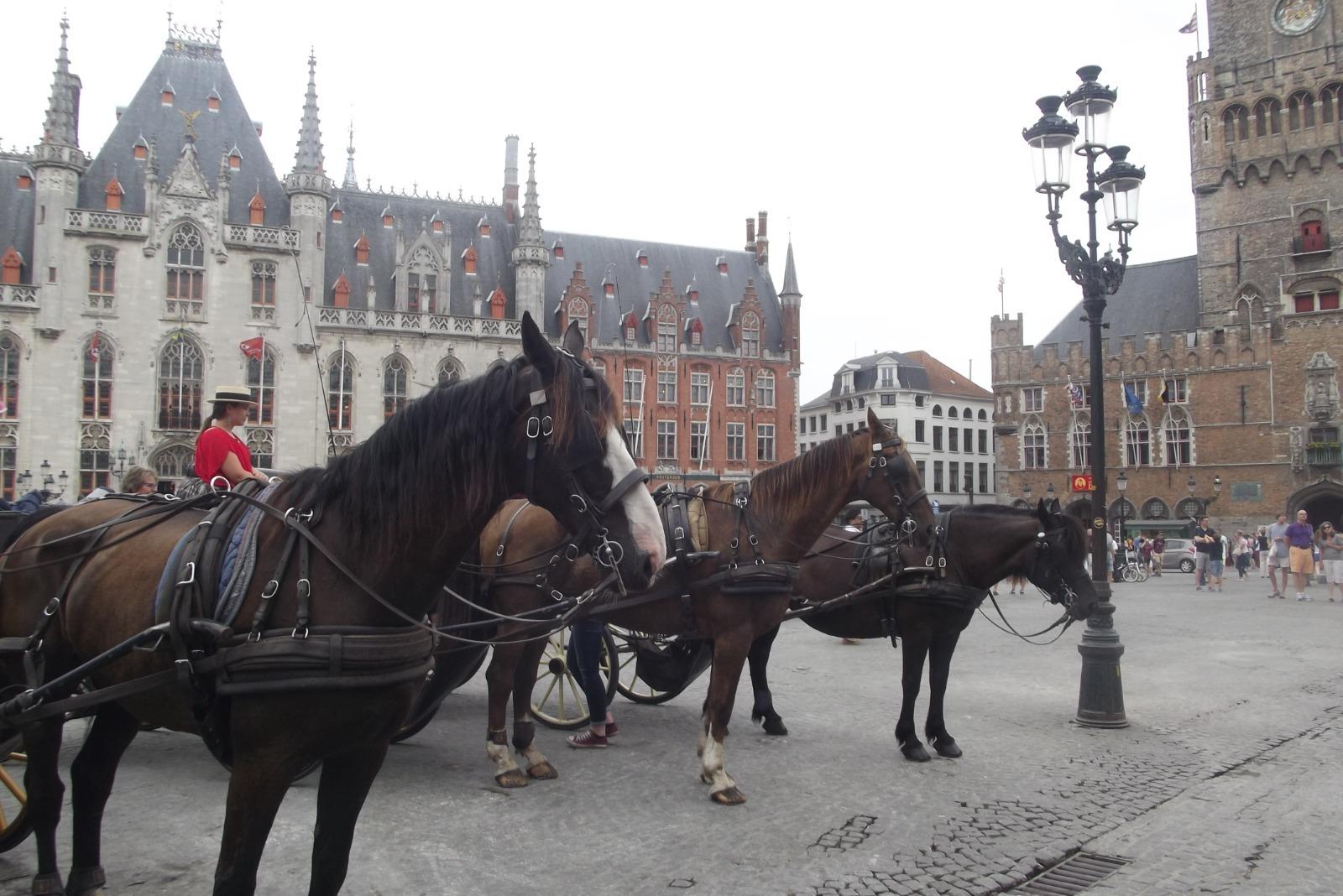 belgioelussemburgo30-1600418908.jpg
