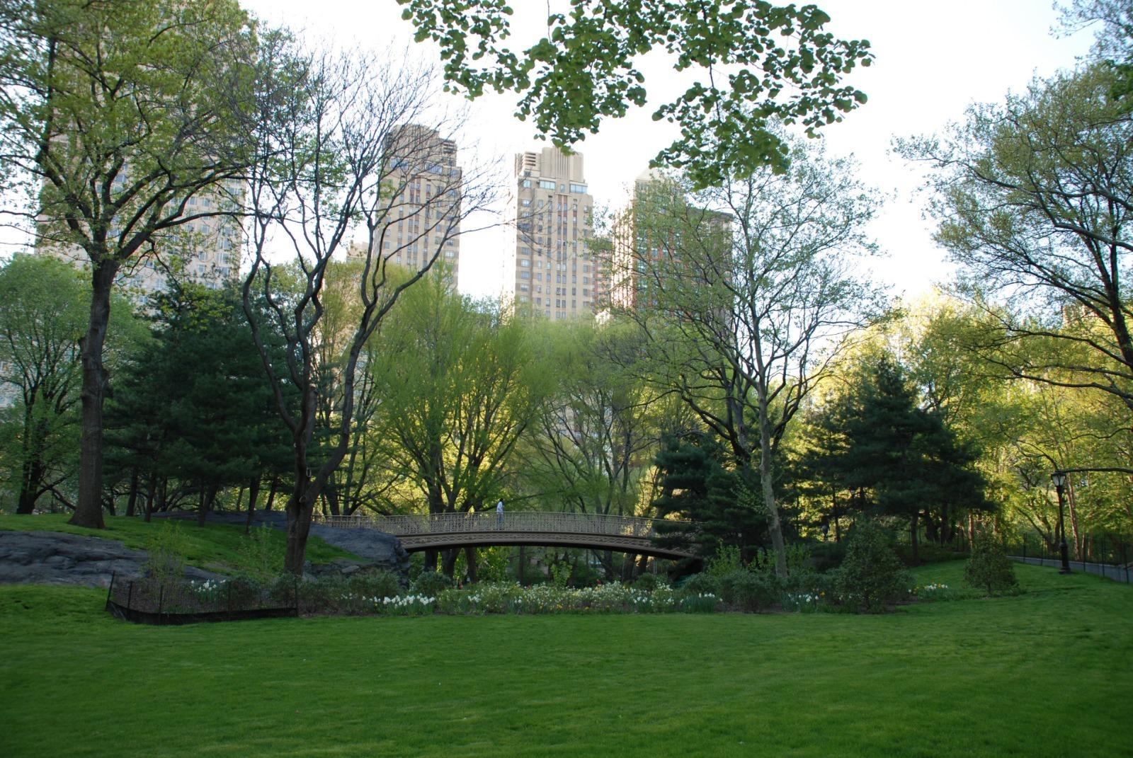 newyork04-1600781329.jpg